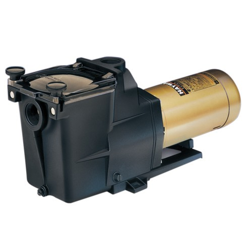 Hayward 1.5 Hp Dual Speed Super Pump